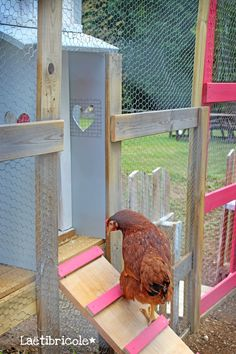 Hen House, Pet Chickens, Diy Shed, Botany, Outdoor Activities, Animals And Pets, Outdoor Gardens, Palette, Merry