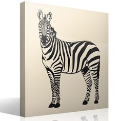 It is an African animal, from the family of horses. Wall Stickers Animals, Fauna, Animal Print Rug, Rugs, Ideas, Mural Painting, Paintings, Murals, Wall Stickers