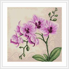 Pink Orchids - Cross Stitch - Luca-S