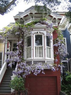 Bay Window, San Francisco, California photo via besttravelphotos . What a cool oval of wisteria framing that Victorian bay window! Victorian Architecture, Beautiful Architecture, Beautiful Buildings, Beautiful Homes, Beautiful Places, Beautiful Dream, Facade Architecture, Hello Beautiful, Custom Shades