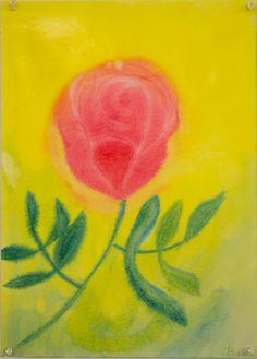 5th Grade: Botany; The Rose