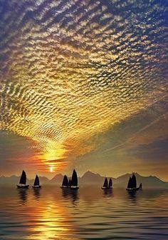 sailboats and sky