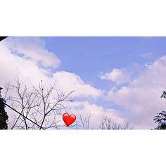 Wallpaper Space, Sunset Wallpaper, Nature Wallpaper, Wallpaper Backgrounds, Cute Photography, Tumblr Photography, Beautiful Wallpaper Pictures, Love Rose Flower, Emoji Wallpaper Iphone