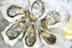 "For fullness, eat oysters. Oysters aren't just an aphrodisiac. They boast zinc, an important trace metal in your diet.  ""Zinc is a vital nutrient to help keep your hair on your head and not shed before its growth cycle is up,"" Aarhus says. ""It also helps regulate the production of androgens, hormones associated with hair loss.""  In a 2013 study in the Annals of Dermatology, researchers found that participants who had various types of hair loss had consistently lower zinc levels than…"