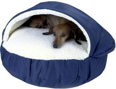 Amazon.com: Snoozer Orthopedic Cozy Cave Pet Bed, Large, Navy: Pet Supplies - Baby Girl Needs This!