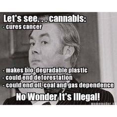 So True! Legalize it!