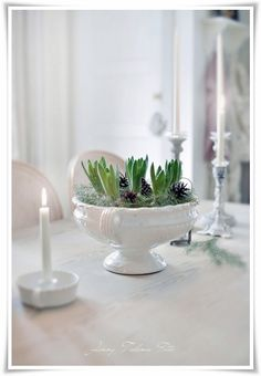 Ironstone and hyacinths--would also look great with milk glass. From Madame Petite.