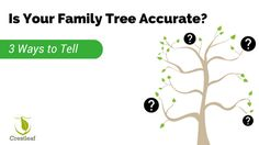 Is Your Family Tree Accurate? 3 Ways to Tell