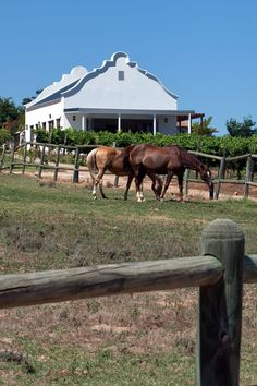 Dunstone Country Estate Country Estate, Cape Town, Countryside, South Africa, Gazebo, Outdoor Structures, Horses, City, Beautiful