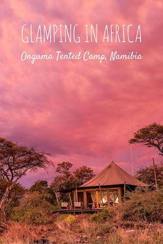 Glamping in Africa: Onguma Tented Camp, Namibia - If roughing it is not your style, why not try glamping in Africa. We spent two nights at the luxurious Onguma Tented Camp, near Etosha, Namibia.