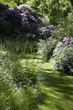Create contrast with mown paths. Photograph by Britt Willoughby Dyer. For more, see 10 Shade Garden Ideas to Steal from an English Woodland.