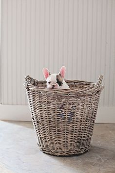 Vintage Belgian Basket