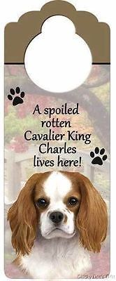 A Spoiled Rotten King Charles Cavalier lives here! dog Doorknob Sign Plaque NEW