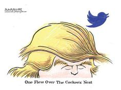 One Flew Over The Cuckoo's Nest...