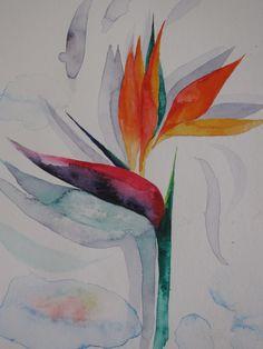 """Bird of Paradise watercolor; 18""""x18""""; by Susan Joe"""