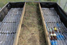 Plastic Bottle Greenhouse, Diy Greenhouse, Hydroponic Plants, Aquaponics, Farm Gardens, Outdoor Gardens, Underground Greenhouse, Garden Compost, Garden Planters