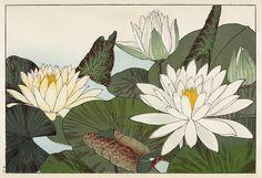 Japanese Woodblock Print 1900