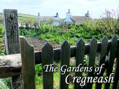 * Lovely Greens *: The Gardens of Cregneash