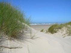 Det deilige Vesterhav! (Blokhus - Denmark) I so remember going here as a small child....Loved the dunes and the ocean!