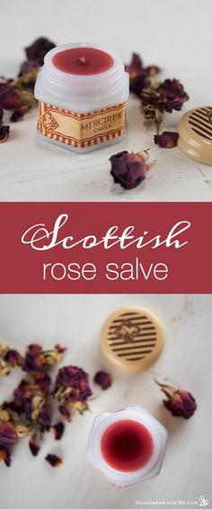 How to Make a Scottish Rose Salve humblebee and me
