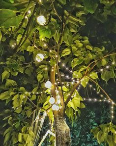 Lights on #lights #night #photooftheday #photography #green #memories #like My Photos, Memories, Lights, Green, Photography, Memoirs, Souvenirs, Photograph, Fotografie