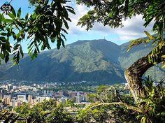 Te presentamos la selección del día: <<POSTALES DE CARACAS>> en Caracas Entre Calles. ============================  F E L I C I D A D E S  >> @arq_lxy << Visita su galeria ============================ SELECCIÓN @teresitacc TAG #CCS_EntreCalles ================ Team: @ginamoca @huguito @luisrhostos @mahenriquezm @teresitacc @marianaj19 @floriannabd ================ #postalesdecaracas #Caracas #Venezuela #Increibleccs #Instavenezuela #Gf_Venezuela #GaleriaVzla #Ig_GranCaracas #Ig_Venezuela…
