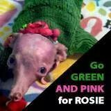 Go green and pink for Rosie