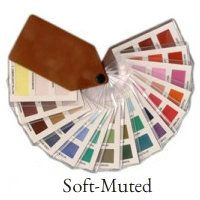 Soft/Muted color swatch fan #color analysis #muted color swatch fan