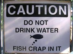 Fish crap