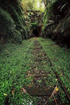 The old railway tunnel in Helensburg.