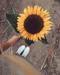 Does she realize she looks like a sunflower, ready to rain sunlight on all who look down upon her? ☼