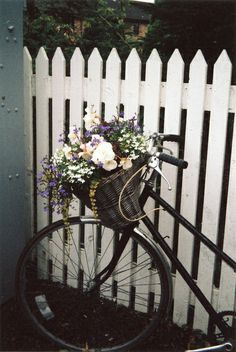 I want an old bike with a basket :)