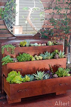 Turn an old dresser into a tiered garden! Turn an old dresser into a tiered garden! Turn an old dresser into a tiered garden! Dream Garden, Home And Garden, Herb Garden, Garden Planters, Terrace Garden, Inside Garden, Garden Modern, Outdoor Planters, Garden Path