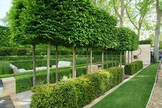 Designer Luciano Giubbilei's masterful use of hedges.