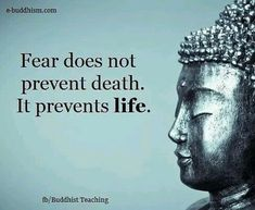 Fear Quotes, Quotable Quotes, Wisdom Quotes, Life Quotes, Buddha Quotes Life, Sayings Of Buddha, Life Death Quotes, Best Buddha Quotes, The Words