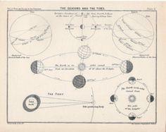 1910 seasons and tides original antique celestial astronomy print