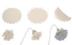 Gumpaste Carnation