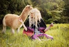 Image result for alpaca fashion photography