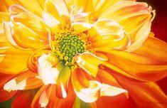 Glory  Elizabeth Kincaid Watercolors