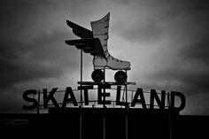Skateland by Jessi Scherr
