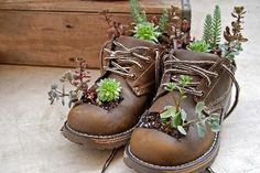 Find Your Repurpose: Green Crafts Projects – Indoor Garden Nook Find Your Repurpose: Green Crafts Projects Repurpose worn-out work boots into a cute planter. Check out the article for more ways to repurpose old items into fun crafts! Succulents In Containers, Succulents Garden, Growing Succulents, Recycled Shoes, Garden Nook, Garden Kids, Garden Cottage, Garden Living, Old Boots