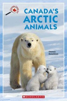 Canada Close Up: Canada's Arctic Animals by Chelsea Donaldson Niagara Falls July 2014 Arctic Animals, Nature Animals, Baby Animals, Cute Animals, Baby Hippo, Baby Giraffes, Wild Animals, Bear Cubs, Panda Bear