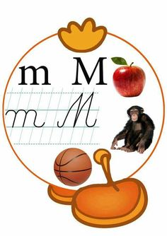 Classroom Decor, Teaching, School, Crafts, Christmas, Hip Bones, Alphabet, Colors, 1st Grades