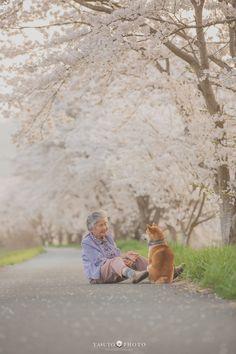 Photographer Captures Heartwarming Photos Of His Grandma And Her Shiba Inu Types Of Animals, Animals Of The World, Animals And Pets, Cute Animals, Shiba Inu, Portraits Illustrés, Image Citation, Japanese Dogs, Akita