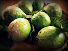 Dünyadaki En Egzotik 25 Meyve - Guava Bu meyve son derece sert ve yaprak dökmeyen bir çalının meyvesidir.