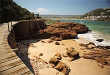 Things to do in Knysna- Featherbed Nature Reserve Stuff To Do, Things To Do, Knysna, Port Elizabeth, Kwazulu Natal, Adventure Activities, Nature Reserve, South Africa, Places To Go