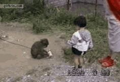 19 More GIFs Of Animals Knocking Out Kids Because It's Time And We Deserve This from Gi...