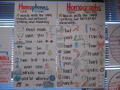 Homophones & Homographs Anchor Charts