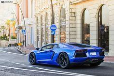 Blue Nethus | Flickr - Photo Sharing!