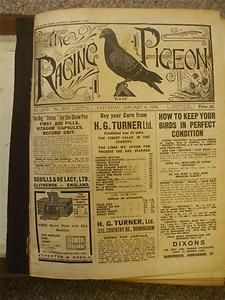 The Racing Pigeon Bound Volume of Weekly Periodical Jan June 1938 Many Adverts | eBay
